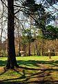 Ceska-Trebova-Park-Javorka-1.jpg