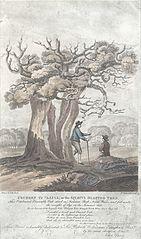 Ceubren Yr Ellyll, or the Spirits Blasted Tree