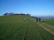 Chanctonbury Ring.jpg