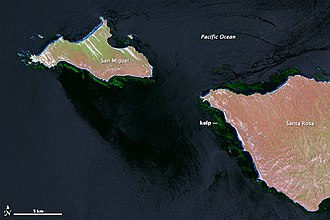 Channel Islands National Marine Sanctuary - Channel Islands kelp forests off San Miguel and Santa Rosa islands. Kelp beds are difficult to spot in conventional color air photos, but stand out clearly in this near-infrared image from Landsat data.