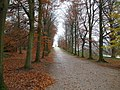 Chatsworth Grounds - Autumn - geograph.org.uk - 1078037.jpg