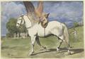 Cherub on Pegasus (SM sg2015z).png