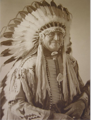 Massacre Canyon - Chief Luther Standing Bear. As a boy he saw the victorious Lakota warriors return to the camp after the Massacre Canyon battle.
