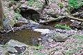 Chroustovskej potok-alibaba - panoramio.jpg
