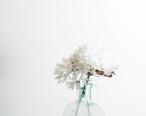 Floral design - Chrysanthemums in an antique bottle. Floral design is commonly an element of editorial photography.