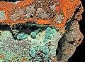 Chrysocolla, hemimorphite, goethite.jpg