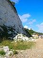 Cliffs at Holywell - geograph.org.uk - 905681.jpg