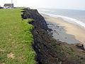 Cliffs at Mount Pleasant, Aldbrough 2004 - geograph.org.uk - 64341.jpg