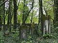 Cmentarz Zydowski Lodz 8.jpg