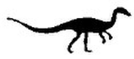 Coelophysis silhouette.jpg