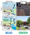 Comparing the natural and urban water cycle and streetscapes in conventional and Blue-Green Cities.png