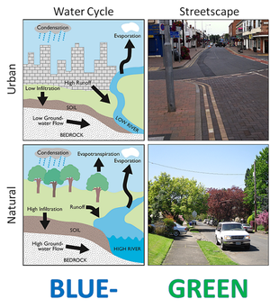 Blue-Green Cities - Comparison of hydrologic (water cycle) and environmental (streetscape) attributes in conventional (upper) and Blue-Green Cities.