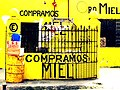 Compramos MIEL - Valladolid, Yucatán.jpg