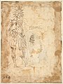 Costume Design with a Large Headdress and Long Cape MET DP823545.jpg