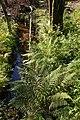 Creek - Oslo, Norway 2020-08-04 (01).jpg