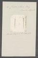 Criseis clava - - Print - Iconographia Zoologica - Special Collections University of Amsterdam - UBAINV0274 080 07 0016.tif