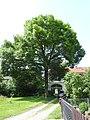 Crispendorf, Thuringia 20.jpg