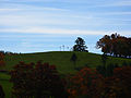Crosses-on-a-hill - West Virginia - ForestWander.jpg