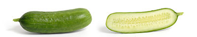 400px-Cucumber_and_cross_section.jpg