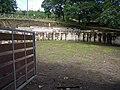 Curro de Cuspedriños 2.jpg