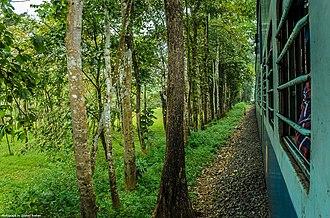 Nilambur–Shoranur line - Image: DR0050DSC 7079