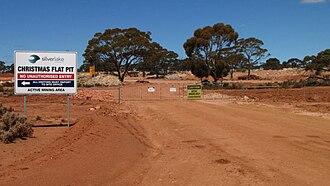 Daisy Milano Gold Mine - Christmas Flat pit gate