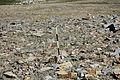 Dana Plateau Plot 070 (11879445886).jpg