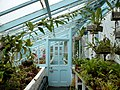 Darwin's greenhouse, Down House - geograph.org.uk - 1200495.jpg