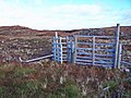 Deer fence with kissing gate - geograph.org.uk - 1539223.jpg
