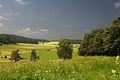 Degerfeld-Karstwanne Bruchtektonik Schwaebische-Alb.jpg