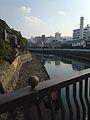 Dejima and Nakashimagawa River from Tamaebashi Bridge.jpg