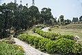 Deolo, Kalimpong, West Bengal 734316, India - panoramio (1).jpg