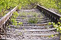 Deserted railroad (2495336876).jpg