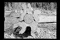 Desmatamento para a Implantação da Futura Ferrovia Madeira-Mamoré - 471, Acervo do Museu Paulista da USP.jpg