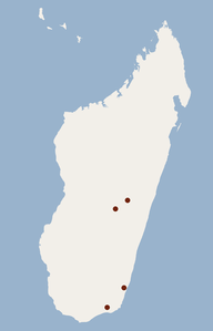 Distribution of Miniopterus sororculus.png