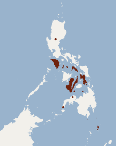 Distribution of Pteropus pumilus.png