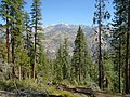 Don Cecil Trail, Kings Canyon.jpg