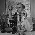 Dr. E.H. Nichel examines a sample of columbium, Oka, Quebec Le Dr E. H. Nichel examinant un échantillon de columbium, Oka (Québec) (46720462015).jpg
