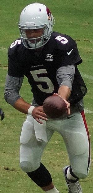 Drew Stanton - Stanton in 2016