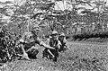 Drie Nederlandse militairen met een lichte mortier in het veld, Bestanddeelnr 7087.jpg