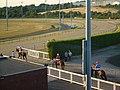 Dunstall Park racecourse, Wolverhampton - geograph.org.uk - 205319.jpg