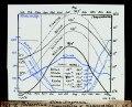 ETH-BIB-Palästina, Klima Diagramm (Temperaturen und Niederschläge)-Dia 247-Z-00172.tif