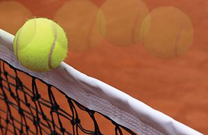 Glossary of tennis terms