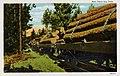 East Texas - Log Train (NBY 430009).jpg
