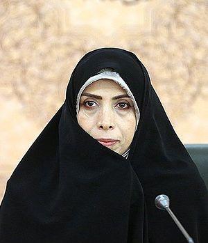 Elham Aminzadeh - Image: Elham Aminzadeh 01