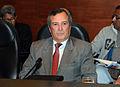 Evento en Cancillería promueve comercio bilateral entre Paraguay y Perú (14172542654).jpg