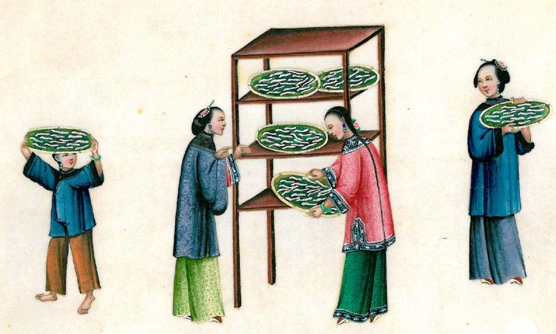 文件:在旧中国11.jpg的日常生活