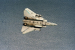F-14A VF-24 Sparrows and Sidewinders 3.JPEG