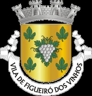 Figueiró dos Vinhos - Image: FVN