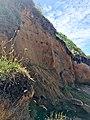 Falaises avec colonie d'hirondelles de rivage-0508.jpg